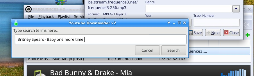 Step 2 - Start youtube mp3 downloader and paste title
